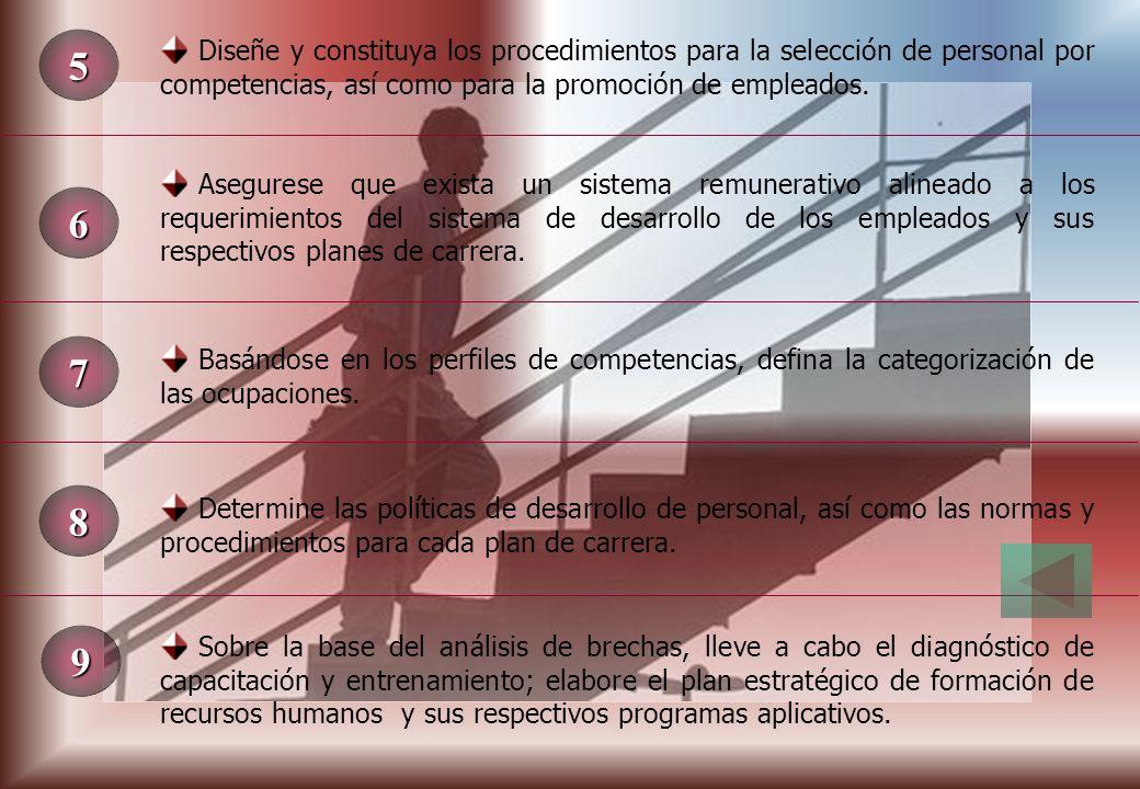 5 Diseñe y constituya los procedimientos para la selección de personal por competencias, así como para la promoción de empleados.