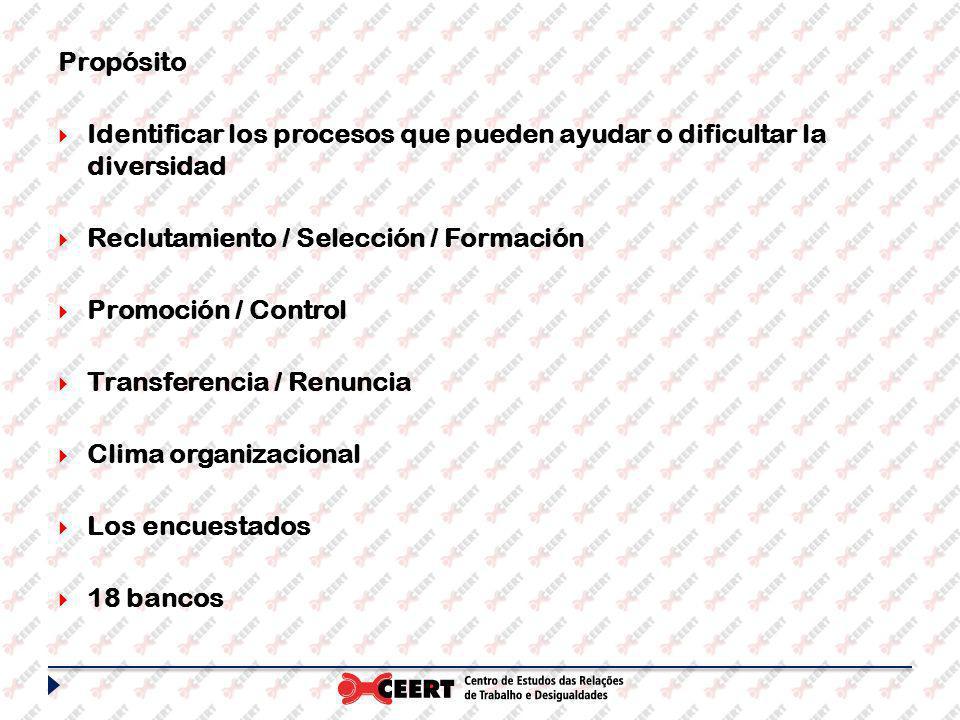 Propósito Identificar los procesos que pueden ayudar o dificultar la diversidad Reclutamiento / Selección / Formación Promoción / Control Transferencia / Renuncia Clima organizacional Los encuestados 18 bancos