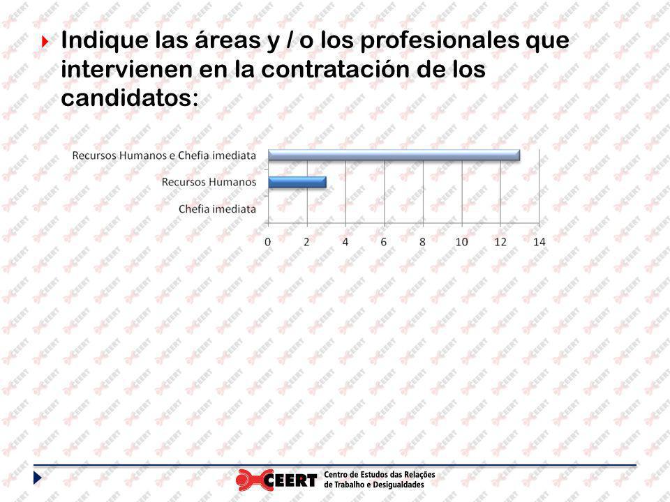 Indique las áreas y / o los profesionales que intervienen en la contratación de los candidatos: