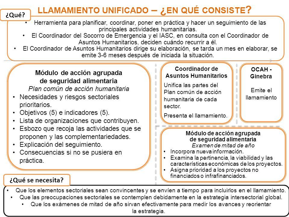 11 LLAMAMIENTO UNIFICADO – ¿ EN QUÉ CONSISTE ? Herramienta para planificar, coordinar, poner en práctica y hacer un seguimiento de las principales act