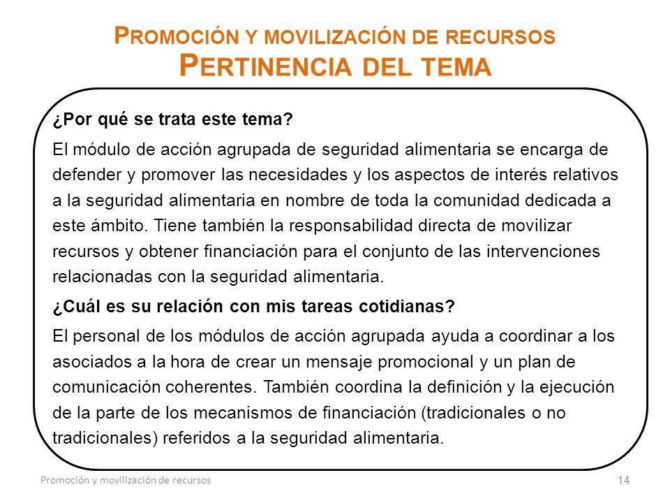 14 P ROMOCIÓN Y MOVILIZACIÓN DE RECURSOS P ERTINENCIA DEL TEMA Promoción y movilización de recursos ¿Por qué se trata este tema.