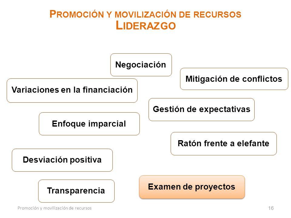 16 P ROMOCIÓN Y MOVILIZACIÓN DE RECURSOS L IDERAZGO Promoción y movilización de recursos Negociación Mitigación de conflictos Variaciones en la financ