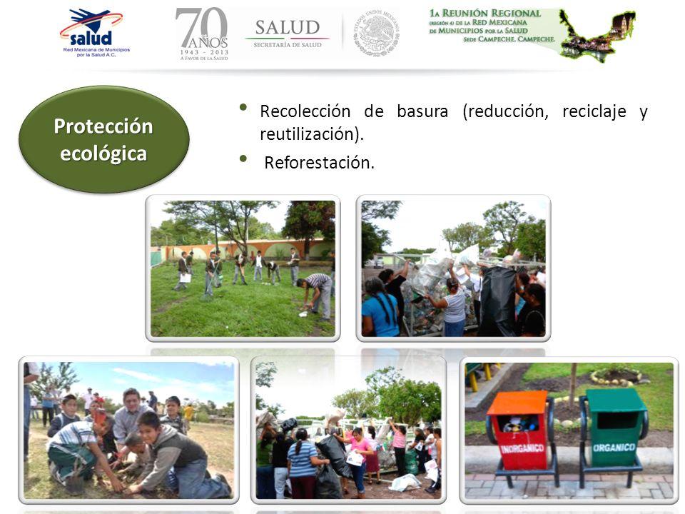 Recolección de basura (reducción, reciclaje y reutilización). Reforestación. Protección ecológica