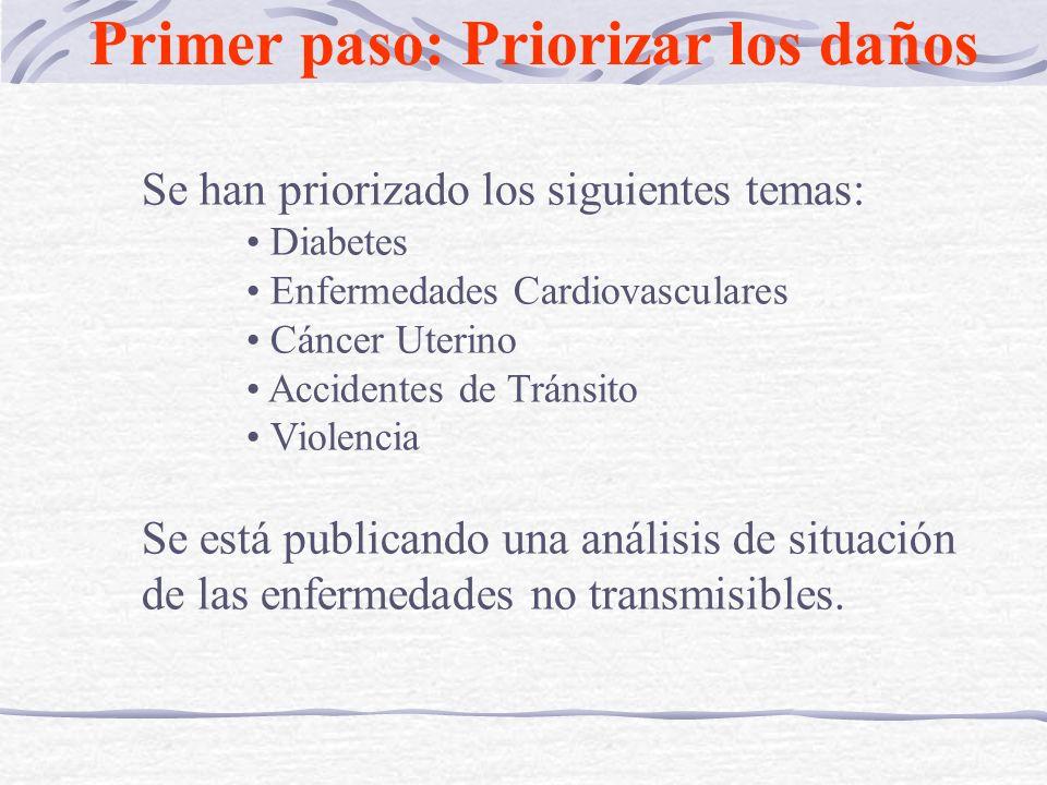 Se han priorizado los siguientes temas: Diabetes Enfermedades Cardiovasculares Cáncer Uterino Accidentes de Tránsito Violencia Se está publicando una análisis de situación de las enfermedades no transmisibles.