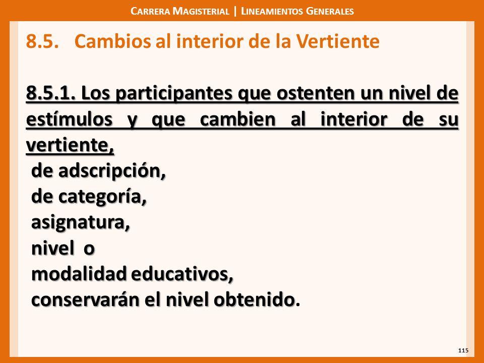 C ARRERA M AGISTERIAL | L INEAMIENTOS G ENERALES 115 8.5.Cambios al interior de la Vertiente 8.5.1.