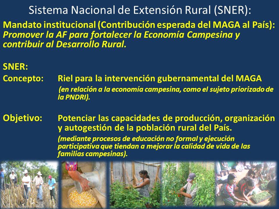 Sistema Nacional de Extensión Rural (SNER): Mandato institucional (Contribución esperada del MAGA al País): Promover la AF para fortalecer la Economía Campesina y contribuir al Desarrollo Rural.