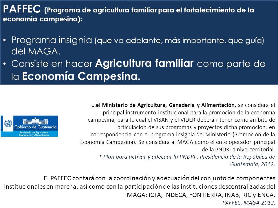 PAFFEC (Programa de agricultura familiar para el fortalecimiento de la economía campesina): Programa insignia (que va adelante, más importante, que guía) del MAGA.