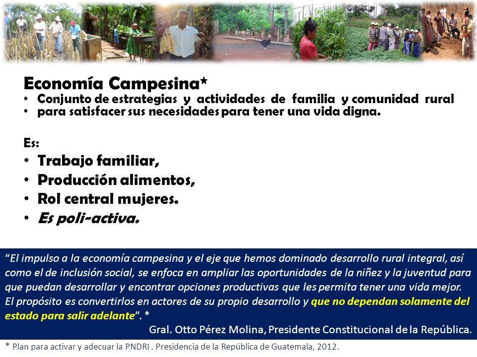 Registro de Participantes del Sistema Nacional de Extensión Rural Productos: 1.Libros de registro municipal de familias participantes en SNER.