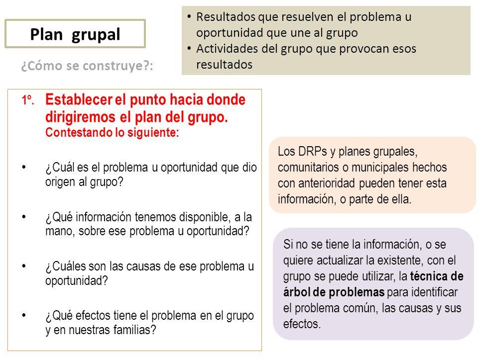 Plan grupal Resultados que resuelven el problema u oportunidad que une al grupo Actividades del grupo que provocan esos resultados 1º.
