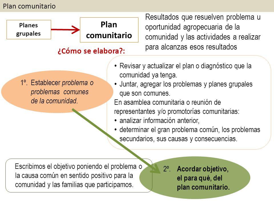 Plan comunitario Planes grupales Plan comunitario ¿Cómo se elabora?: Resultados que resuelven problema u oportunidad agropecuaria de la comunidad y las actividades a realizar para alcanzas esos resultados 1º.