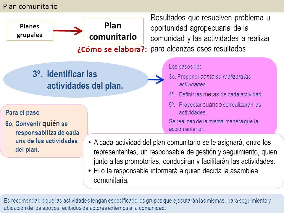 Plan comunitario Planes grupales Plan comunitario ¿Cómo se elabora?: Resultados que resuelven problema u oportunidad agropecuaria de la comunidad y las actividades a realizar para alcanzas esos resultados Los pasos de: 3o.