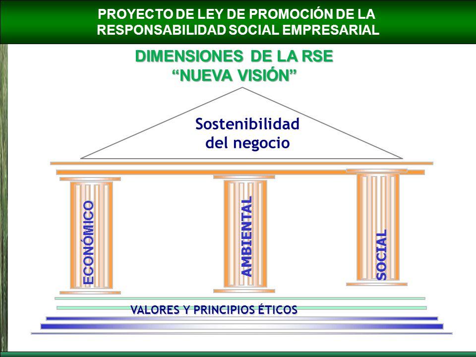 PROYECTO DE LEY DE PROMOCIÓN DE LA RESPONSABILIDAD SOCIAL EMPRESARIAL DIMENSIONES DE LA RSE NUEVA VISIÓN ECONÓMICO AMBIENTAL SOCIAL VALORES Y PRINCIPI