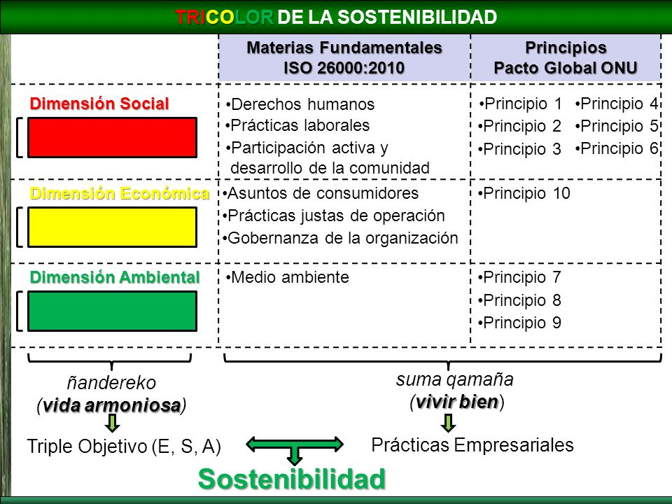Dimensión Social Dimensión Económica Dimensión Ambiental Asuntos de consumidores Prácticas laborales Medio ambiente Participación activa y desarrollo