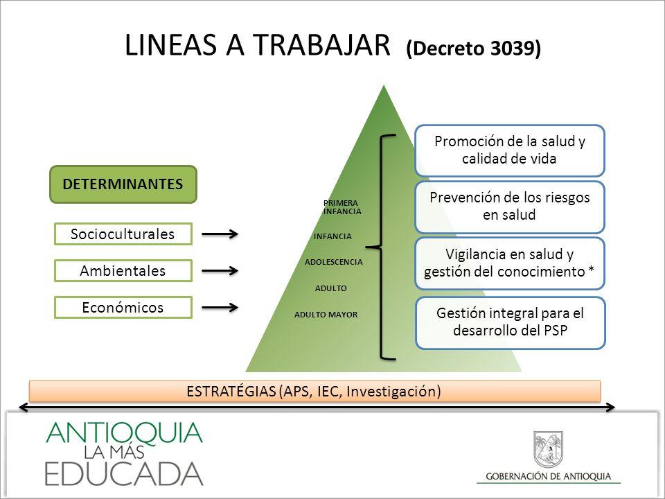 LINEAS A TRABAJAR (Decreto 3039) Promoción de la salud y calidad de vida Prevención de los riesgos en salud Vigilancia en salud y gestión del conocimi