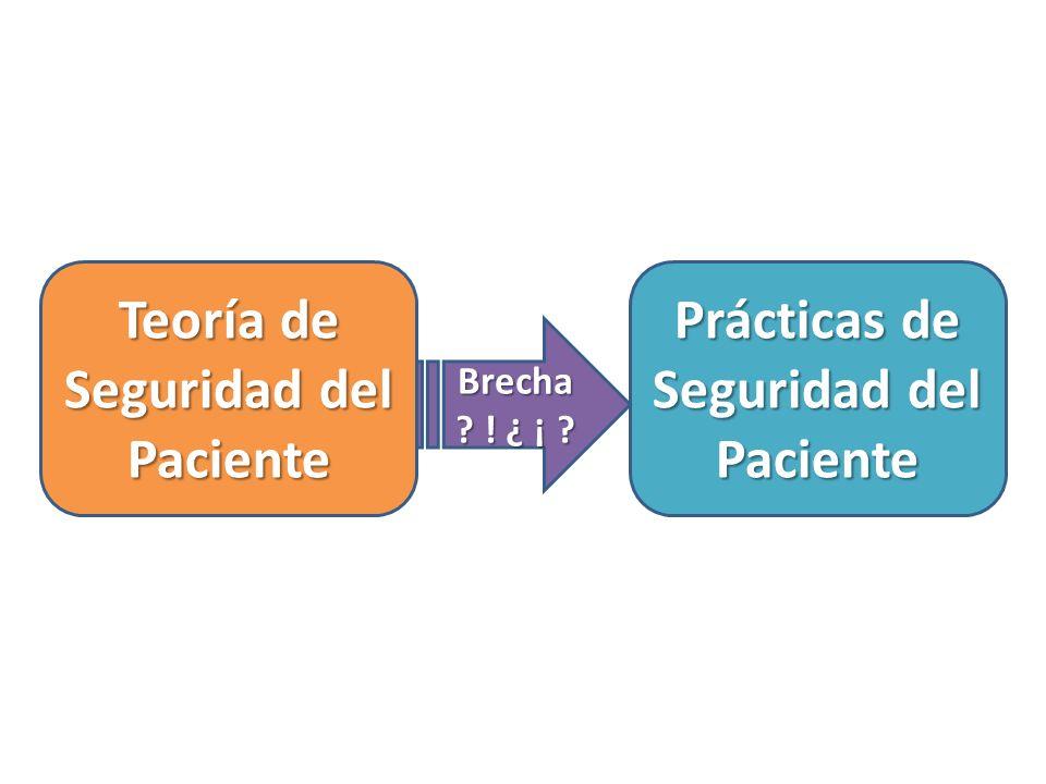 Teoría de Seguridad del Paciente Prácticas de Seguridad del Paciente Brecha ? ! ¿ ¡ ?