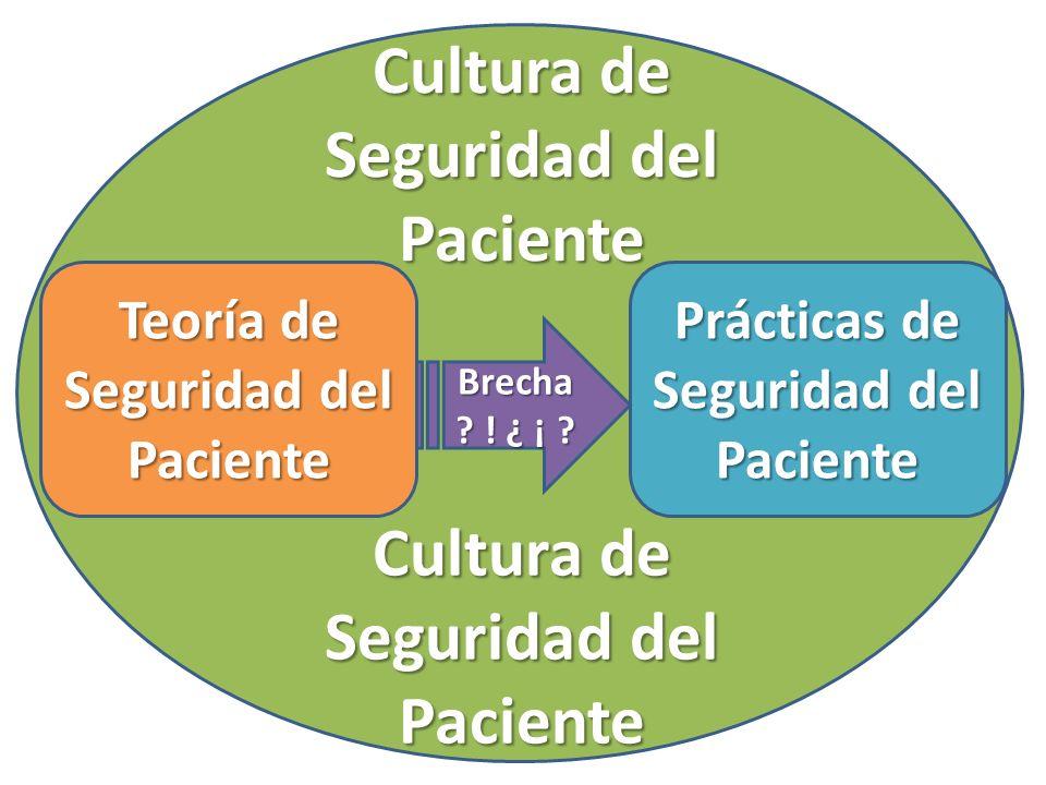 ccccc Teoría de Seguridad del Paciente Prácticas de Seguridad del Paciente Brecha ? ! ¿ ¡ ? Cultura de Seguridad del Paciente