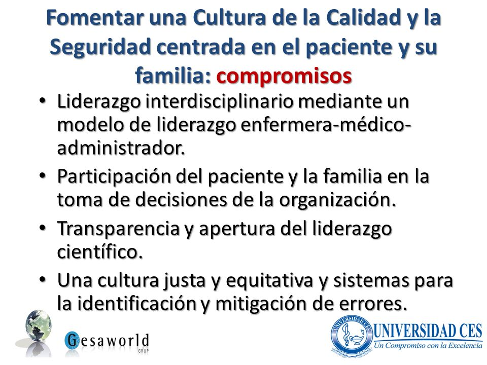 Fomentar una Cultura de la Calidad y la Seguridad centrada en el paciente y su familia: compromisos Liderazgo interdisciplinario mediante un modelo de