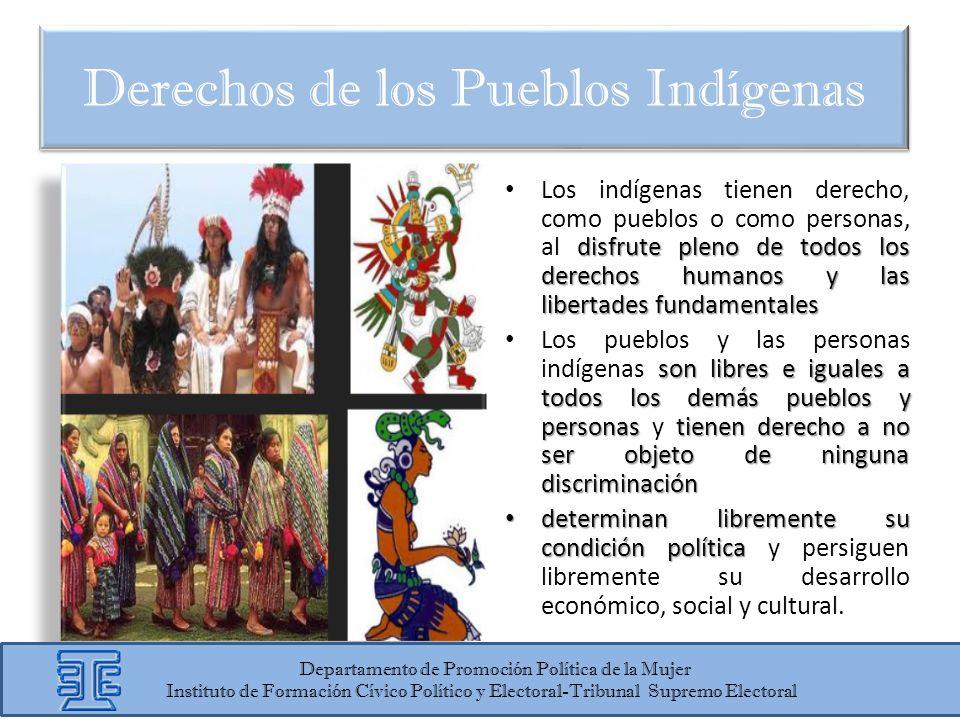 disfrute pleno de todos los derechos humanos y las libertades fundamentales Los indígenas tienen derecho, como pueblos o como personas, al disfrute pl