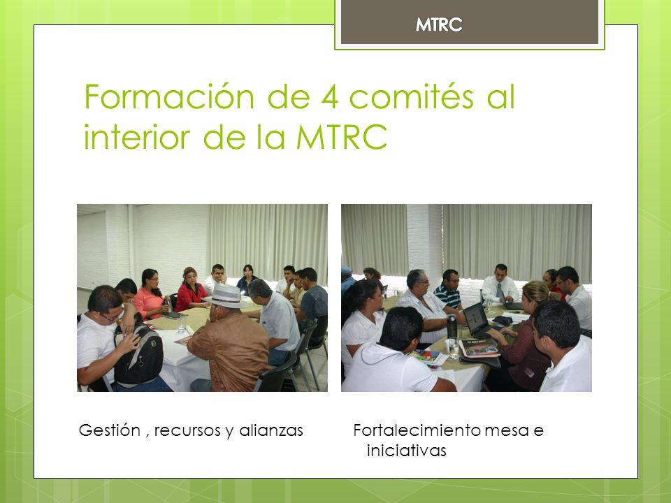 Formación de 4 comités al interior de la MTRC Gestión, recursos y alianzasFortalecimiento mesa e iniciativas