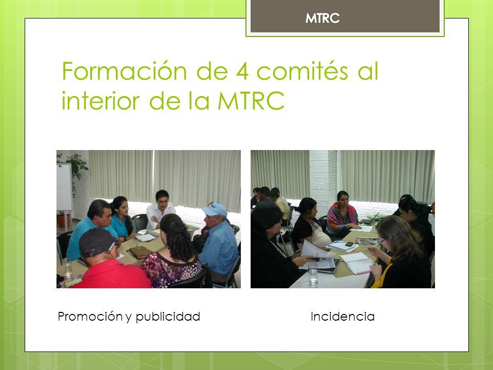 Formación de 4 comités al interior de la MTRC Promoción y publicidad Incidencia