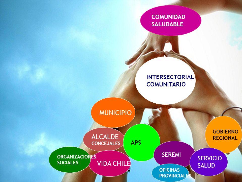 Gobierno de Chile / Ministerio de Salud ALCALDE CONCEJALES MUNICIPIO APS SEREMI COMUNIDAD SALUDABLE INTERSECTORIAL COMUNITARIO VIDA CHILE OFICINAS PRO