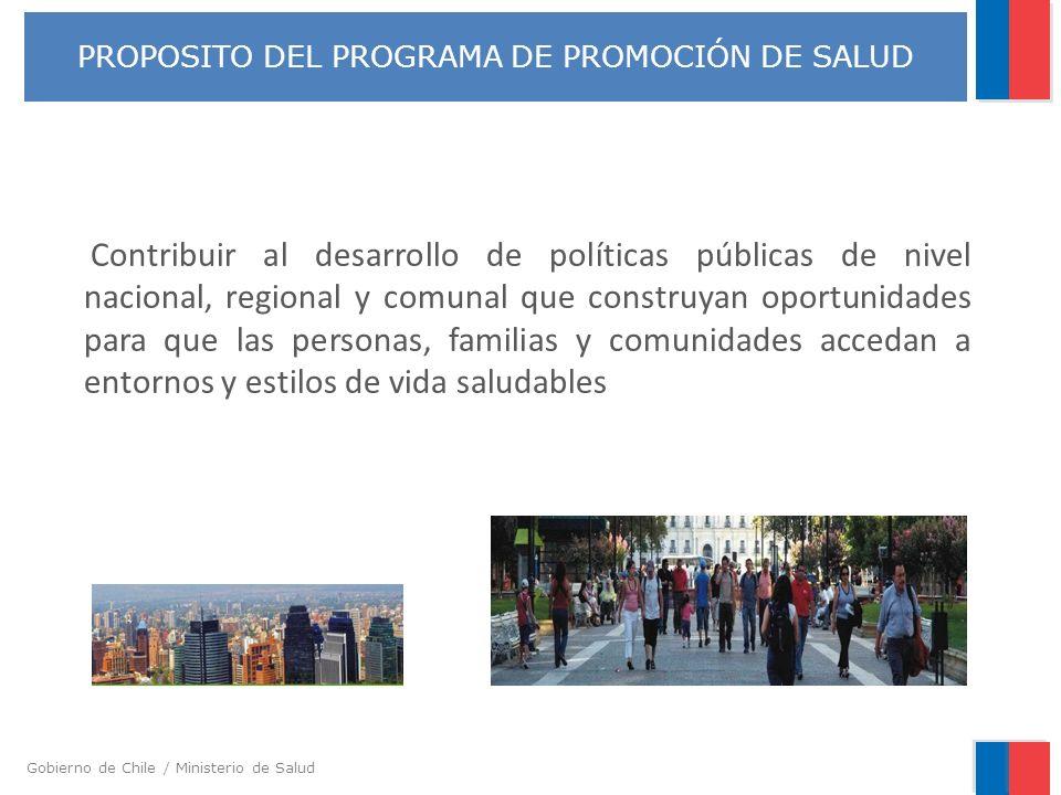 Gobierno de Chile / Ministerio de Salud Contribuir al desarrollo de políticas públicas de nivel nacional, regional y comunal que construyan oportunida