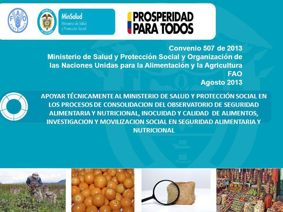 Convenio 507 de 2013 Ministerio de Salud y Protección Social y Organización de las Naciones Unidas para la Alimentación y la Agricultura FAO Agosto 2013 APOYAR TÉCNICAMENTE AL MINISTERIO DE SALUD Y PROTECCIÓN SOCIAL EN LOS PROCESOS DE CONSOLIDACION DEL OBSERVATORIO DE SEGURIDAD ALIMENTARIA Y NUTRICIONAL, INOCUIDAD Y CALIDAD DE ALIMENTOS, INVESTIGACION Y MOVILIZACION SOCIAL EN SEGURIDAD ALIMENTARIA Y NUTRICIONAL