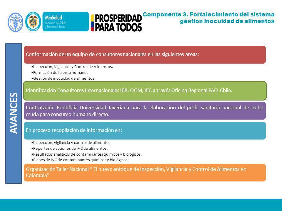 Conformación de un equipo de consultores nacionales en las siguientes áreas: Inspección, Vigilancia y Control de Alimentos. Formación de talento human