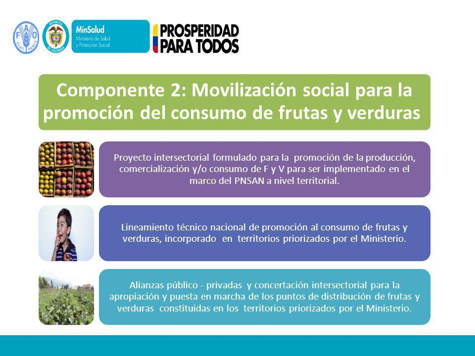 Componente 2: Movilización social para la promoción del consumo de frutas y verduras Proyecto intersectorial formulado para la promoción de la producción, comercialización y/o consumo de F y V para ser implementado en el marco del PNSAN a nivel territorial.