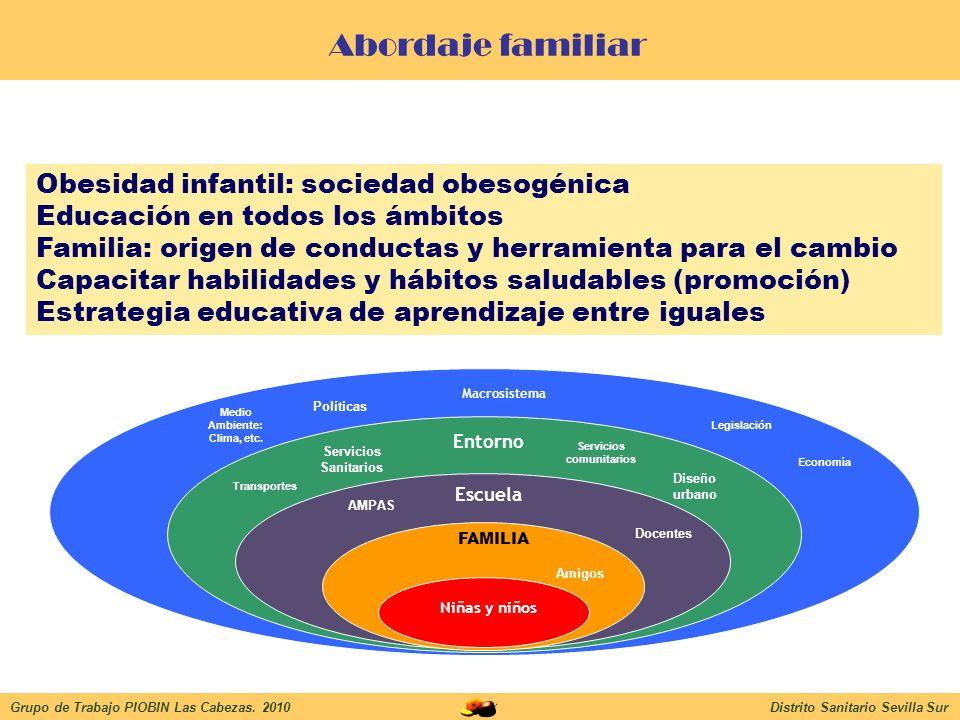 Objetivos Grupo de Trabajo PIOBIN Las Cabezas 2010Distrito Sanitario Sevilla Sur Conocer estrategia de intervención de abordaje familiar más adecuada.