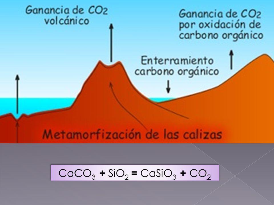 El CO2 arrojado por los volcanes suele ser reciclado, proveniente de un carbonato. En la subducción tectónica las calizas son arrastradas y sometidas