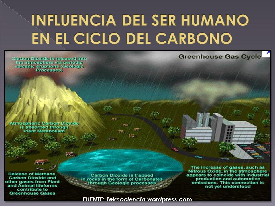 FUENTE: Teknociencia.wordpress.com