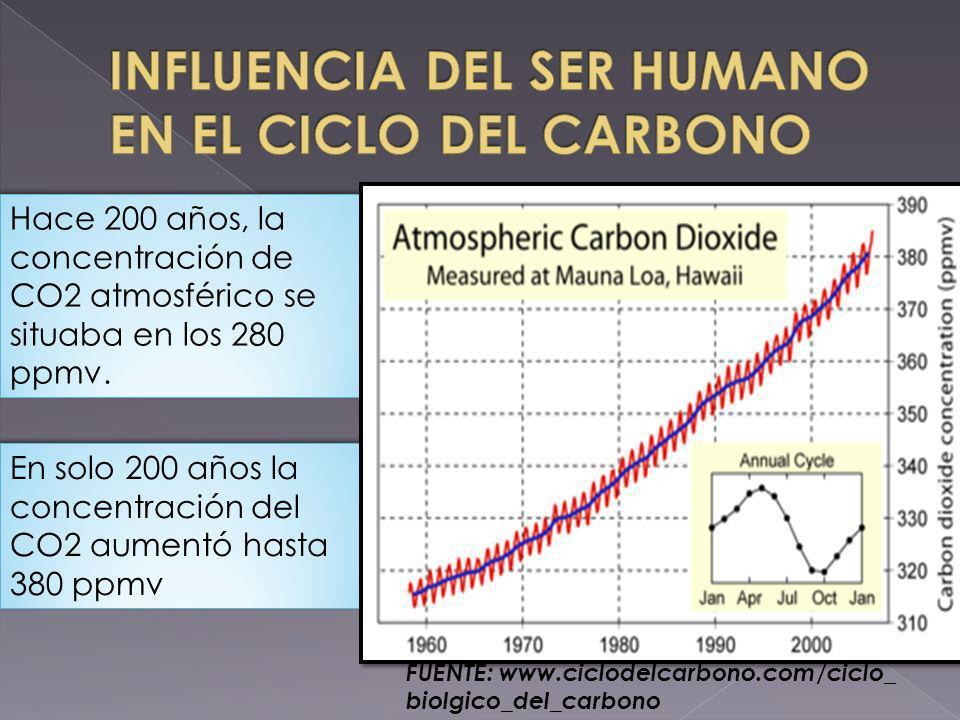 Hace 200 años, la concentración de CO2 atmosférico se situaba en los 280 ppmv. En solo 200 años la concentración del CO2 aumentó hasta 380 ppmv FUENTE
