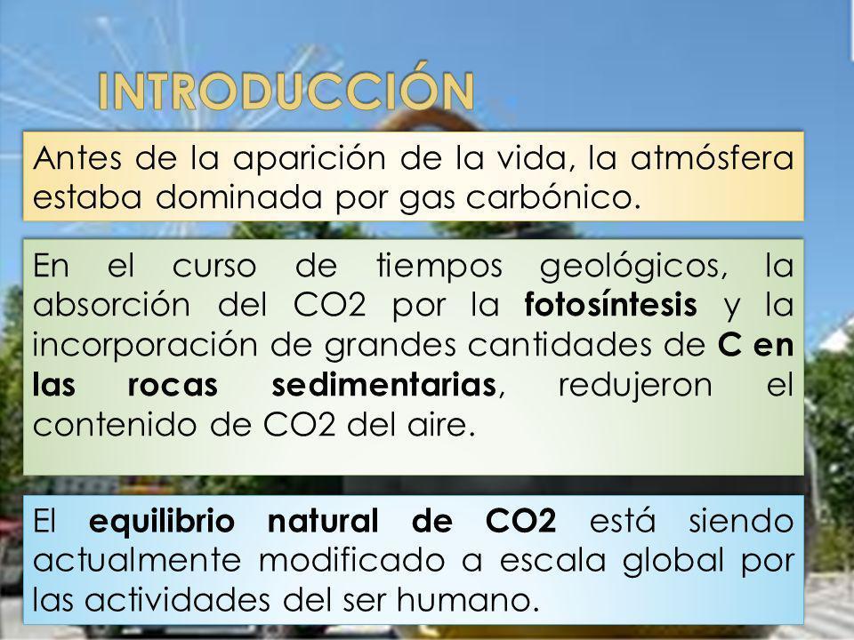Antes de la aparición de la vida, la atmósfera estaba dominada por gas carbónico. En el curso de tiempos geológicos, la absorción del CO2 por la fotos