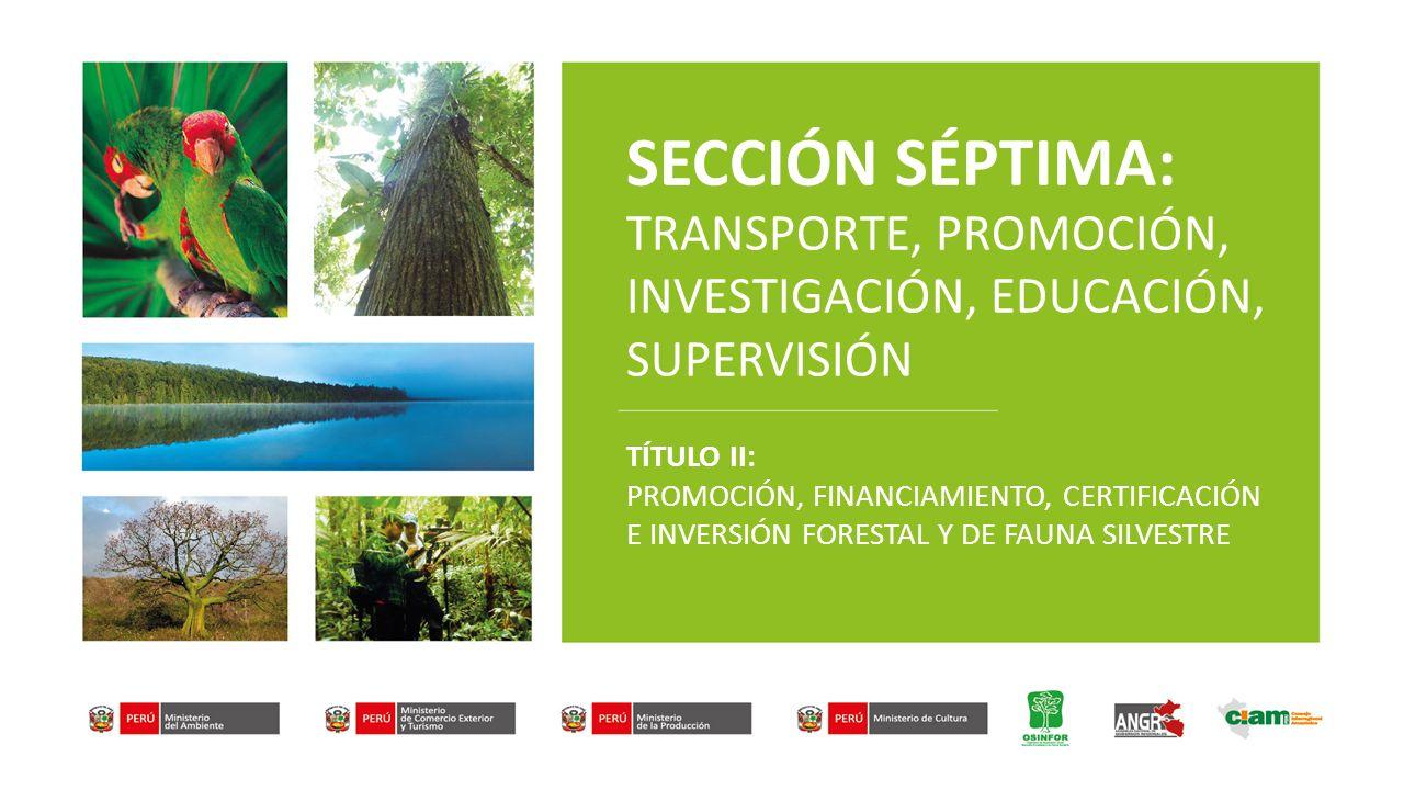 SECCIÓN SÉPTIMA: TRANSPORTE, PROMOCIÓN, INVESTIGACIÓN, EDUCACIÓN, SUPERVISIÓN TÍTULO II: PROMOCIÓN, FINANCIAMIENTO, CERTIFICACIÓN E INVERSIÓN FORESTAL