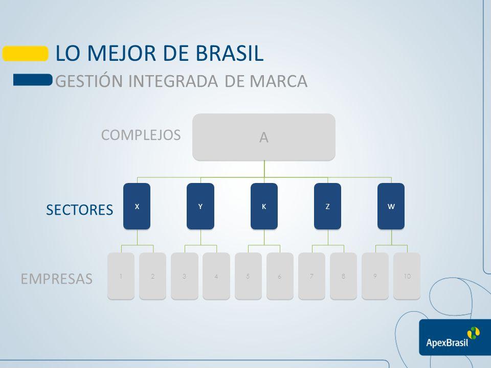 OBJETIVOS Posicionar los complejos productivos en mercados prioritarios elegidos por APEX-Brasil,a partir de acciones de imagen, buscando el aumento de la percepción del valor de los productos brasileños Buscar sinergía entre los sectores, agrupandolos en complejos Maximizar recursos técnicos y financieros PROMOCIÓN DE LA IMAGEN BRASIL