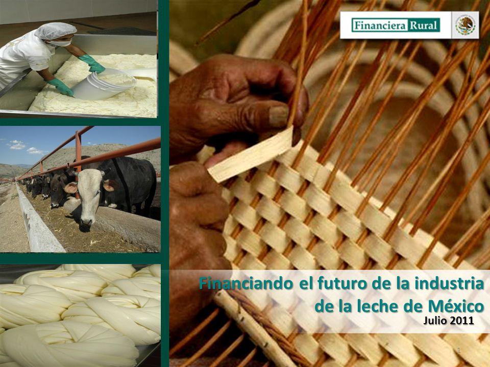 Dirección General Adjunta de Fomento y Promoción de Negocios Dirección Ejecutiva de Programas y Productos 1 Financiando el futuro de la industria de la leche de México Julio 2011