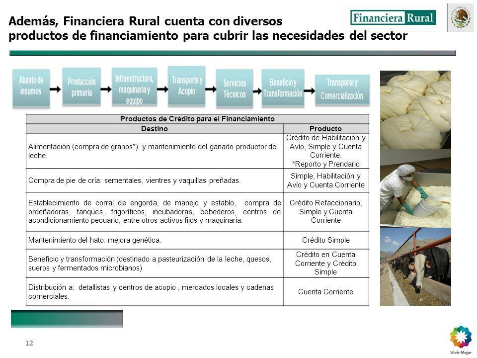 Dirección General Adjunta de Fomento y Promoción de Negocios 12 Además, Financiera Rural cuenta con diversos productos de financiamiento para cubrir las necesidades del sector Productos de Crédito para el Financiamiento DestinoProducto Alimentación (compra de granos*) y mantenimiento del ganado productor de leche.