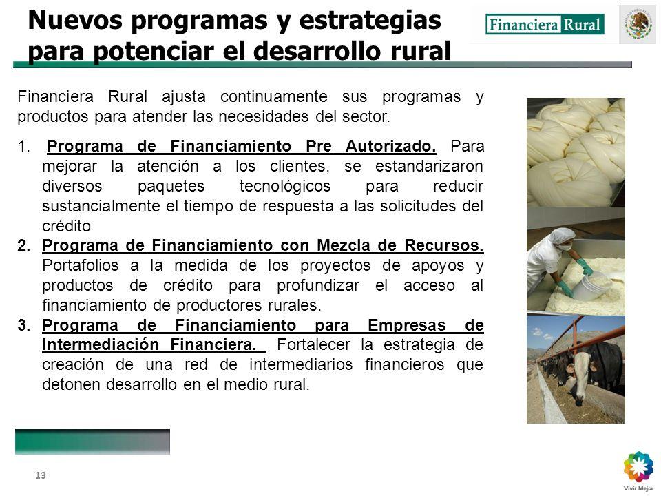 Dirección General Adjunta de Fomento y Promoción de Negocios 13 Nuevos programas y estrategias para potenciar el desarrollo rural Financiera Rural ajusta continuamente sus programas y productos para atender las necesidades del sector.