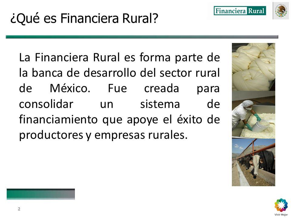 Dirección General Adjunta de Fomento y Promoción de Negocios 2 ¿Qué es Financiera Rural.