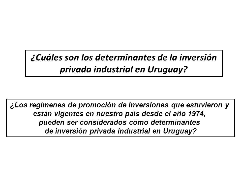 ¿Cuáles son los determinantes de la inversión privada industrial en Uruguay? ¿Los regímenes de promoción de inversiones que estuvieron y están vigente