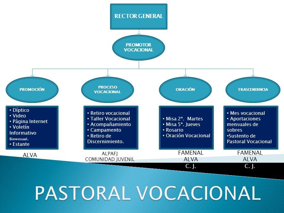 RECTOR GENERAL PROMOTOR VOCACIONAL PROMOCIÓN PROCESO VOCACIONAL TRASCENDENCIA ORACIÓN Díptico Video Página Internet Voletín Informativo Bimensual.