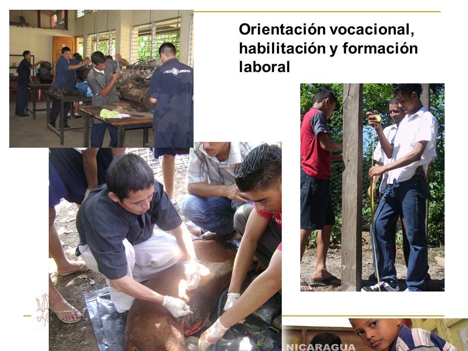 Orientación vocacional, habilitación y formación laboral