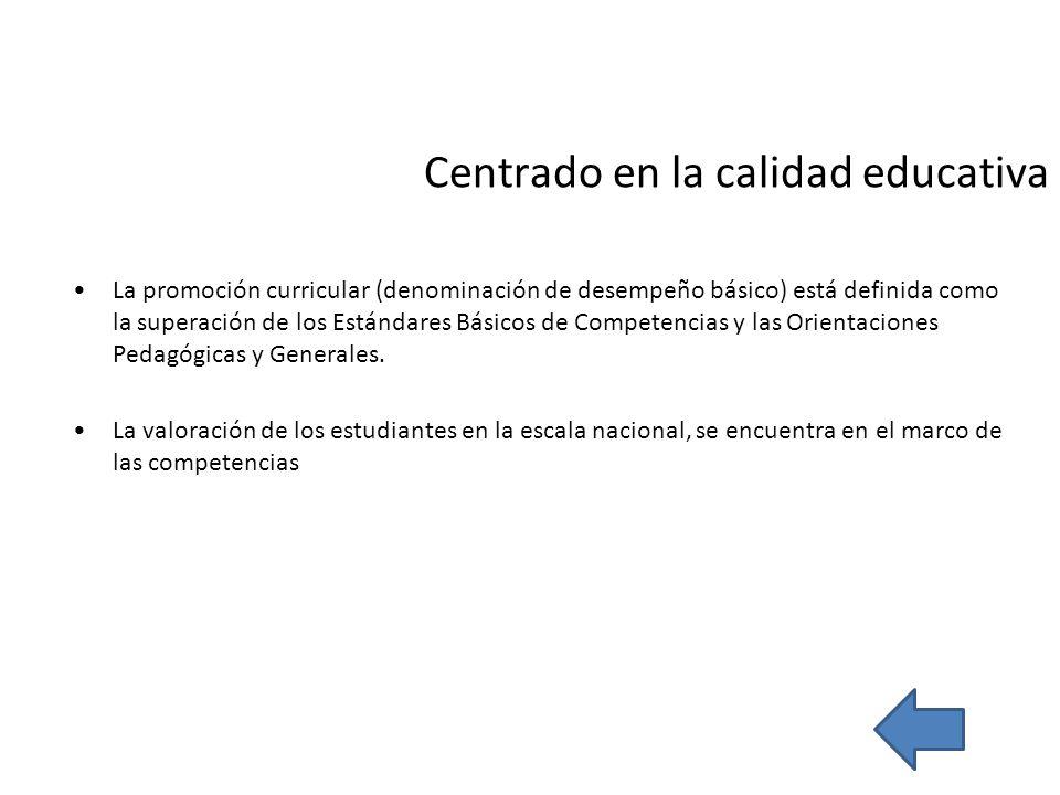 Centrado en la calidad educativa La promoción curricular (denominación de desempeño básico) está definida como la superación de los Estándares Básicos