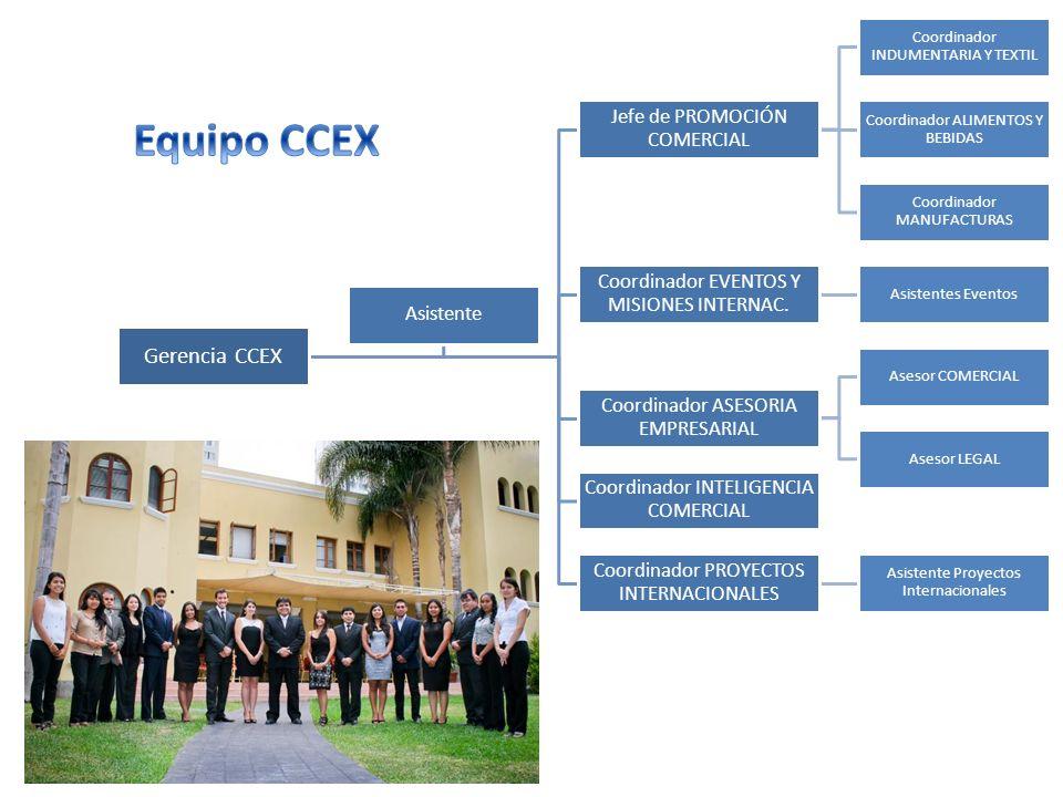 Gerencia CCEX Jefe de PROMOCIÓN COMERCIAL Coordinador INDUMENTARIA Y TEXTIL Coordinador ALIMENTOS Y BEBIDAS Coordinador MANUFACTURAS Coordinador EVENT