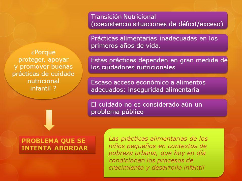PROBLEMA QUE SE INTENTA ABORDAR Transición Nutricional (coexistencia situaciones de déficit/exceso) Prácticas alimentarias inadecuadas en los primeros