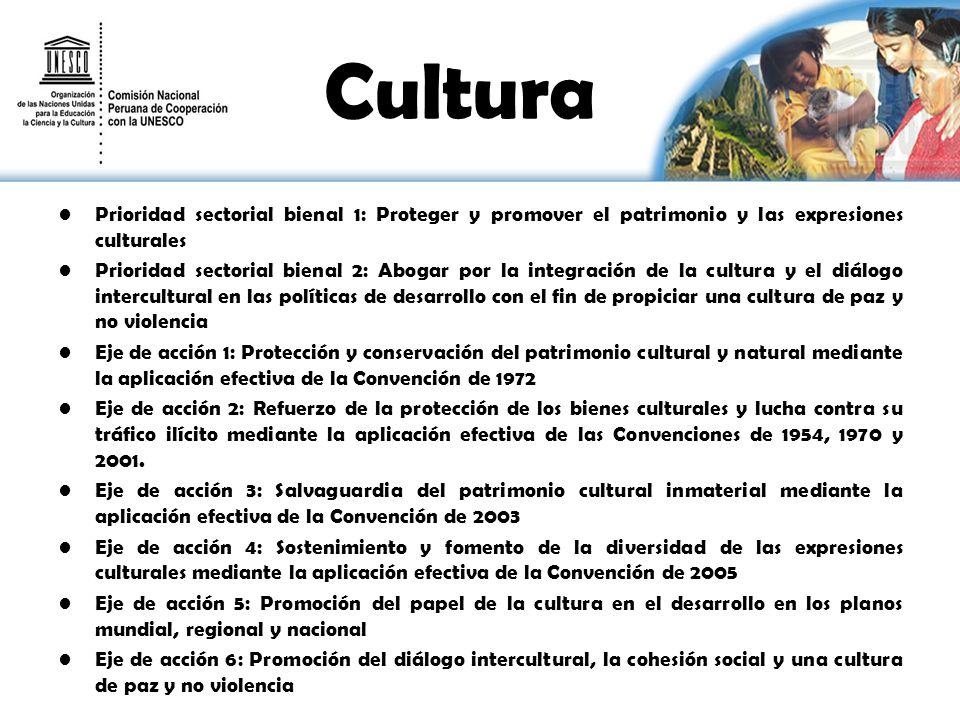 Cultura Prioridad sectorial bienal 1: Proteger y promover el patrimonio y las expresiones culturales Prioridad sectorial bienal 2: Abogar por la integ