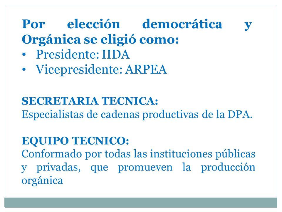Por elección democrática y Orgánica se eligió como: Presidente: IIDA Vicepresidente: ARPEA SECRETARIA TECNICA: Especialistas de cadenas productivas de la DPA.