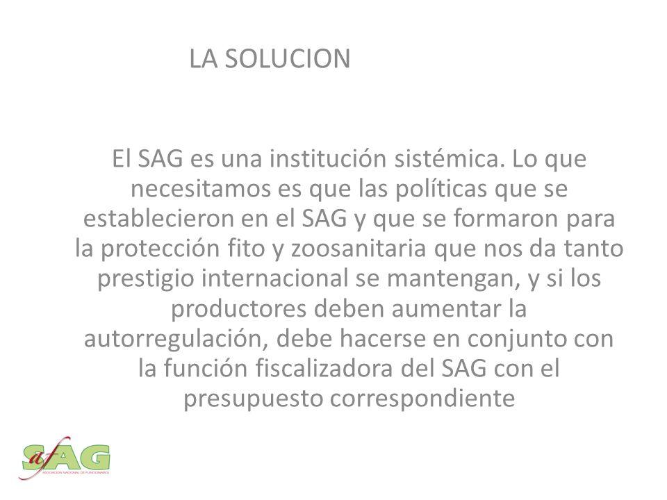El SAG es una institución sistémica.