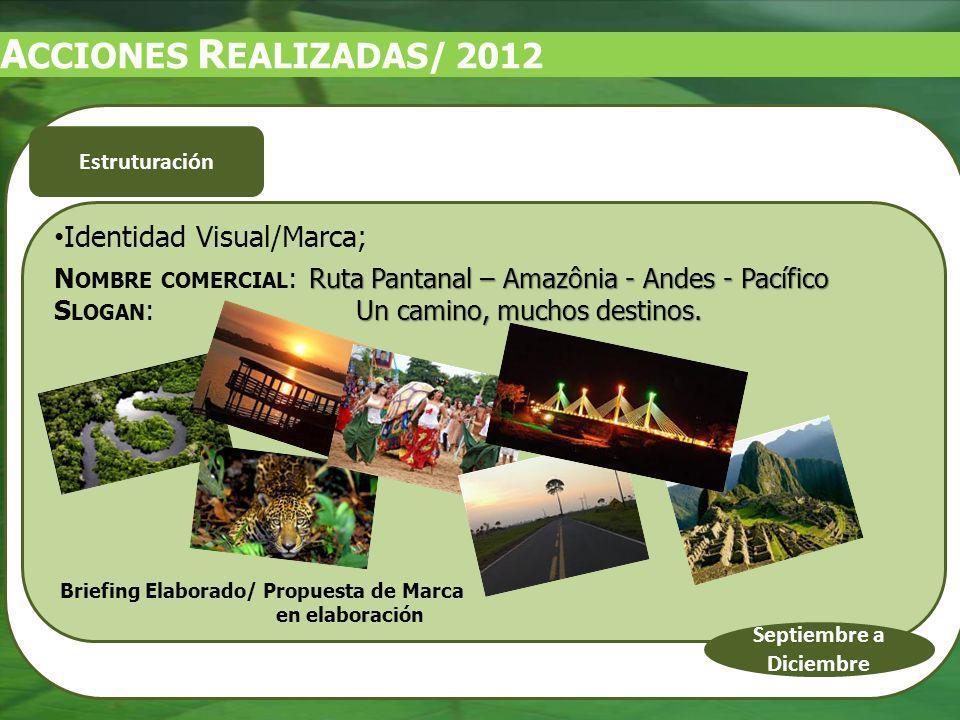 Identidad Visual/Marca; Ruta Pantanal – Amazônia - Andes - Pacífico N OMBRE COMERCIAL : Ruta Pantanal – Amazônia - Andes - Pacífico Un camino, muchos destinos.
